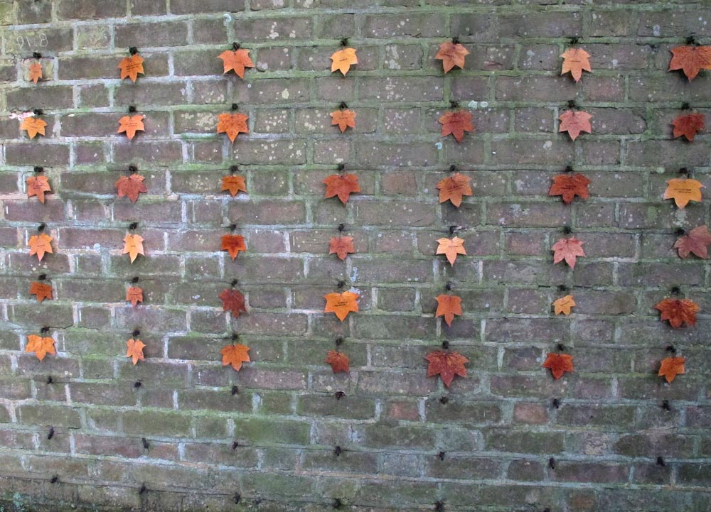 Autumn-Leaving-wall-1